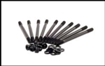 ARP FSI Head Stud Kit