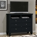Sandy Beach Media Chest in Black Finish by Coaster - 201326