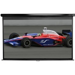 "Manual Series Projection Screen 49 x 87 (100"" Diagonal)"