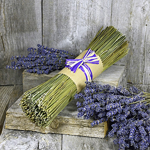 Organic Lavender Sticks