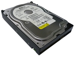 Western Digital Caviar Blue (WD800BB) 80GB 2MB Cache 7200RPM ATA100 Hard Drive - w/ 1 Year Warranty