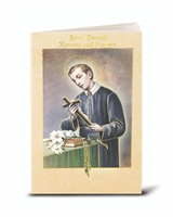 Saint Gerard Novena and Prayers 2432-615