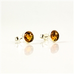 Honey Amber Oval Stud Earrings