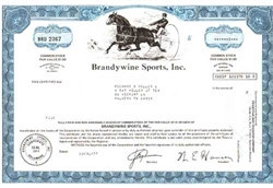 Brandywine Sports, Inc. Stock Certificate