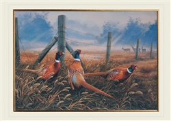 Meadow Mist and Pheasants Thanksgiving Card