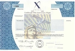X Prize Lindbergh 75th Anniversary Flight Specimen Stock Certificate