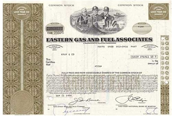 Eastern Gas and Fuel Associates Stock - Olive