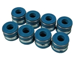 Viton Valve Seal Set-20R/22R/RE/RET-For Pro Guides