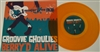 "Groovie Ghoulies - Berry'd Alive 10"" Orange Vinyl"