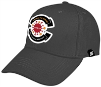 Team Baseball Cap with Color Covid-19 Honoring the Victims Logo