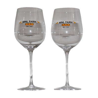 1 Set of Two Glasses - Glass Wine Cup - MNL Farm