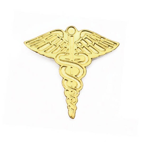 Gold Caduceus Pin