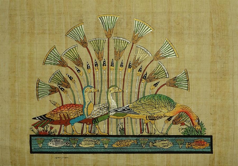 Duck lotus flower papyrus mightylinksfo