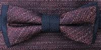 ZAZZI bow & pocket square