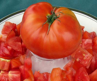 Aker's West Virginia Heirloom Tomato Seeds