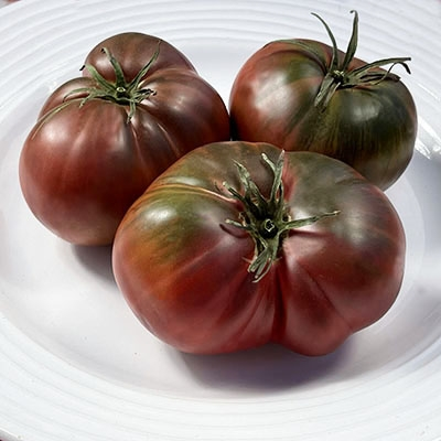 Black Sea Man-Heirloom Tomato