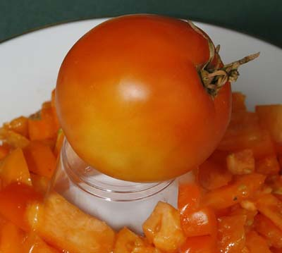 Golden Sunray Tomato