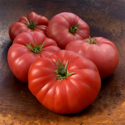 Mrs. Maxwell's Big Italian-Tomato Seeds