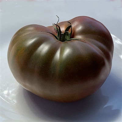 Paul Robeson Heirloom Tomato