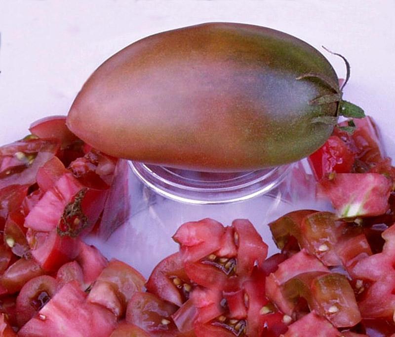 purple russian organic tomato seeds