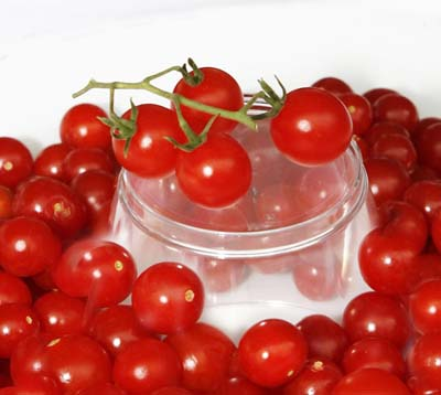 Red Currant Tomato