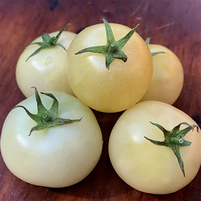 Super Snow White Tomato