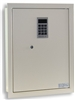 Protex PWS-1814E Wall Safe