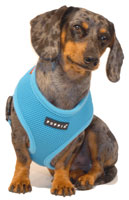 Sky Blue Puppia Harness