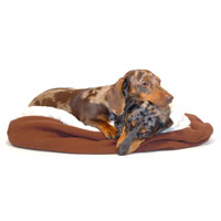 Vanilla and Chocolate Dachshund Bed