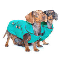 Reversible Truly Teal Dachshund Coat