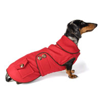 Reversible Little Red Riding Dachshund Coat