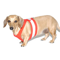 Cherry Red Easy-Go Never-Choke Dachshund Harness