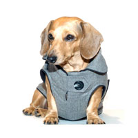 Reversible Executive Dachshund Coat