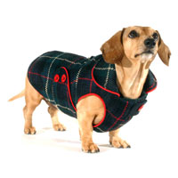 Reversible Concord Plaid Dachshund Coat