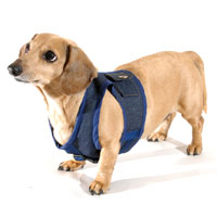 Denim Delight Classic Never-Choke Dachshund Harness