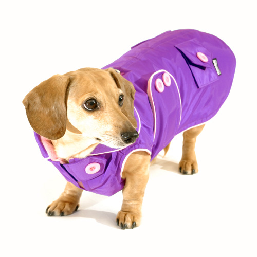Pretty Purple Blizzard Dachshund Parka with Thinsulate