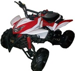 110cc Full Sized Atv