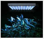 48w LED Aquarium Plants Grow Light Blue White Lamp