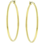 Large Golden Hoop Earrings