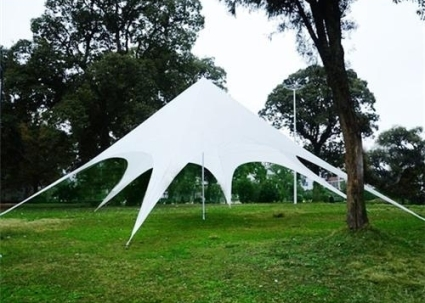 16.4 Foot Star Shaped Party Tent Canopy Gazebo & Foot Star Shaped Party Tent Canopy Gazebo