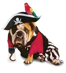 Zelda Pirate Pet Halloween Costume