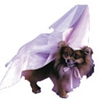 Princess Pet Halloween Costume