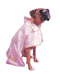 Hound Dog Pet Halloween Costume