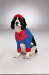 Spiderman Dog Halloween Costume
