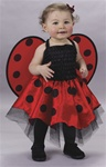 Lady Bug Infant Halloween Costume