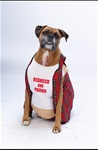 Big Dog Red Neck Pet Halloween Costume