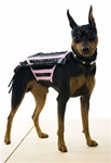 Doginatrix Pink-Black Pet Halloween Costume