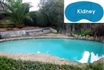 Complete 16'x32' Kidney InGround Swimming Pool Kit with Steel Supports