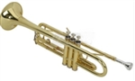 Golden Trumpet and Mouthpiece