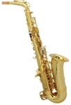Alto Eb Saxophone Sax Gold with Case Mouthpiece Reeds